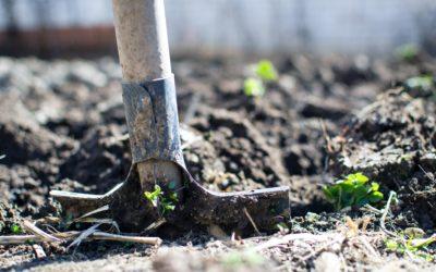Was Stoiker aus Gartenarbeit lernen können